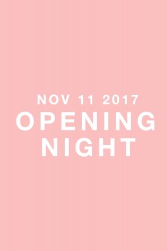 https://falsedigital.com/files/gimgs/th-40_OPENING-NIGHT2.jpg