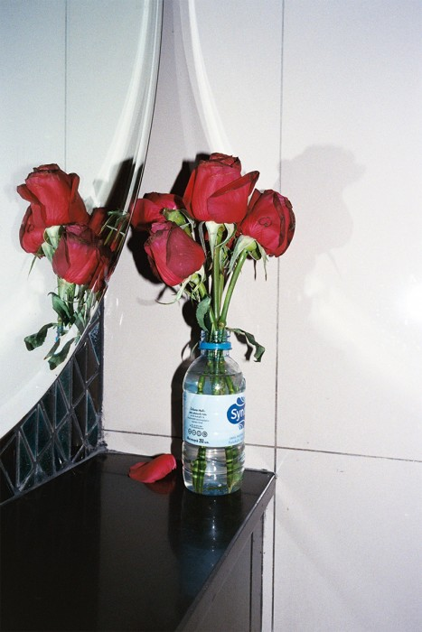 http://www.falsedigital.com/files/gimgs/th-27_roses.jpg